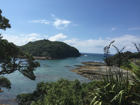 Goat Island Reserve