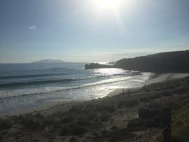 Beach at Tawharanui