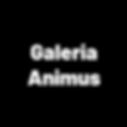 Edtech Galeria Animus
