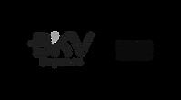 formatos logo bkv+samsung-02.png