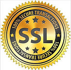 ssl secured.jpg