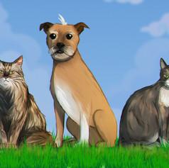 Pets commission