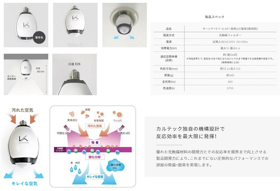 ターンドケイ電球4.jpg