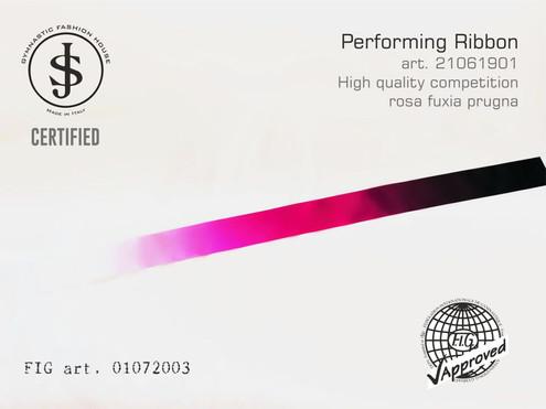 Nastro da ritmica 21061901 Fig art. 01072003 € 18,00 fig approved