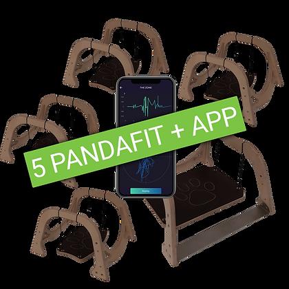 Professional pack: 5x Pandafit