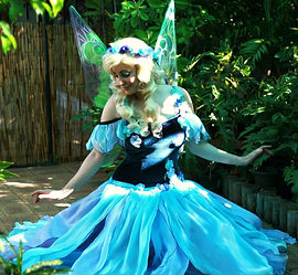 fairy party theme hire perth