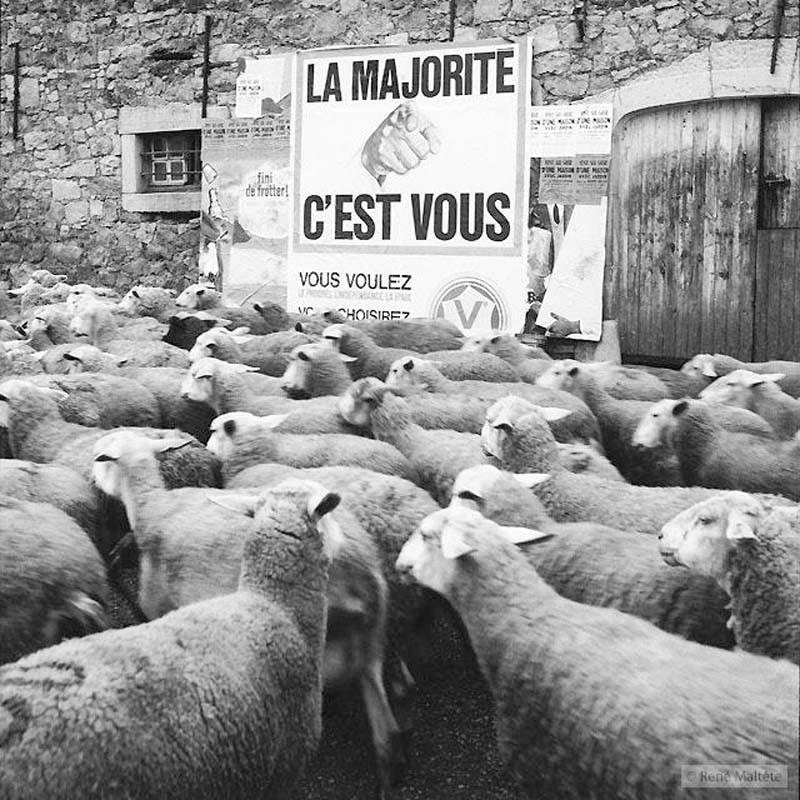 014_René_Maltête.jpg