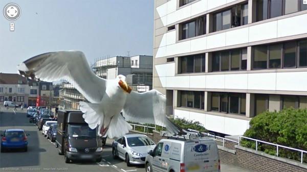 003 Street View.jpg