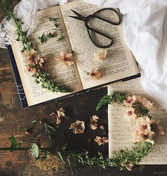 Old Magick Book With Scattered Herbal Flowers