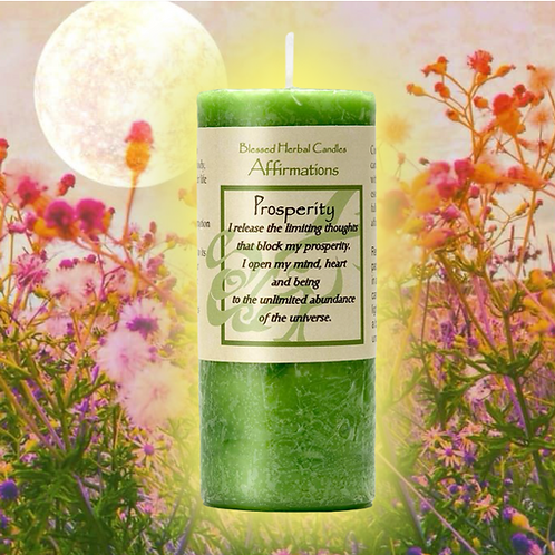 Prosperity Affirmation Candle- + Free Talisman Petition Paper -$$$ Etc...