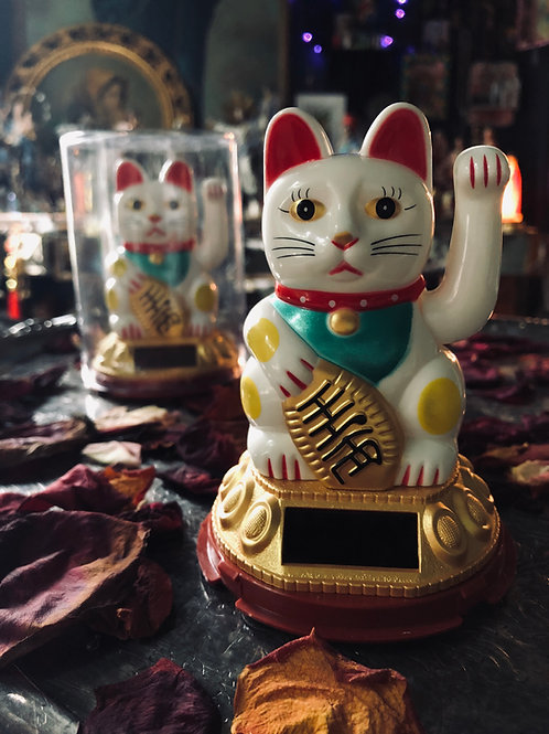Neko (Lucky Cats or Fortune Cats) Brings Good Fortune to its Owner