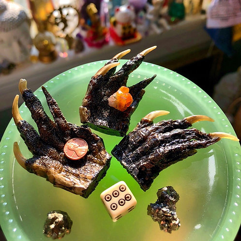 Alligator Claw- Enhance Winnings, Success, Good Luck Charm, hoodoo, has 7day candles, spell. witchy, rootwork
