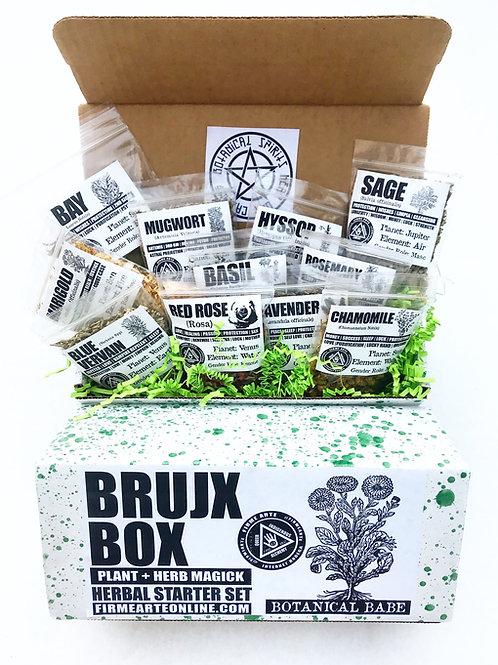 Bruj@ Box | Botanical Babe | Herbal Starter Set