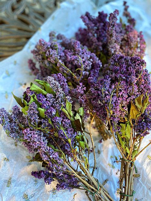 Dried Purple Lilac Flowers Bundle- Romance, Protection, Good Fortune
