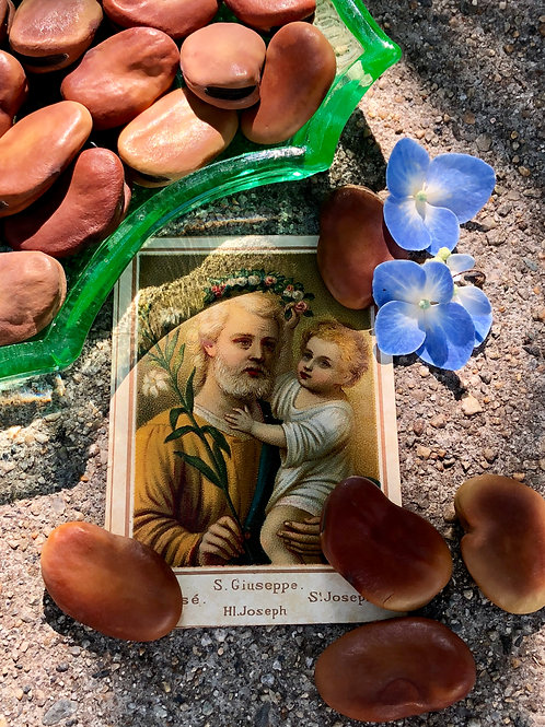 Saint Joseph Beans (Mojo Beans)- Used to Manifest Wishes & Desires