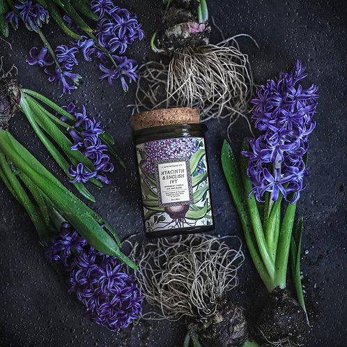 Botanical    Hyacinth + Ivy   Candle