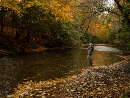 Gear Review: Miss Mayfly Waders
