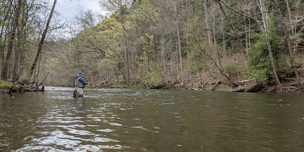 Fly Fishing the Clear Fork River