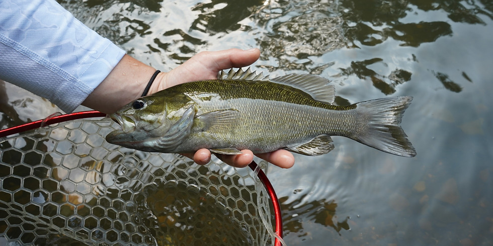 Smallmouth Float Trip with Mad River Outfitters