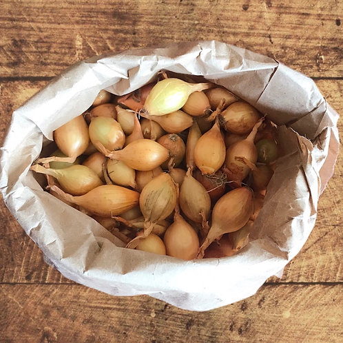 Bulbes d'oignons (sac d'environ 75)