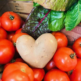 tomates coeur.jpg