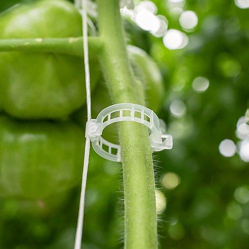 Attache pour plant de tomates (à l'unité)
