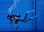 DiveAward