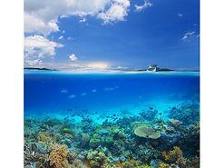 沖縄北部半水面写真.jpg