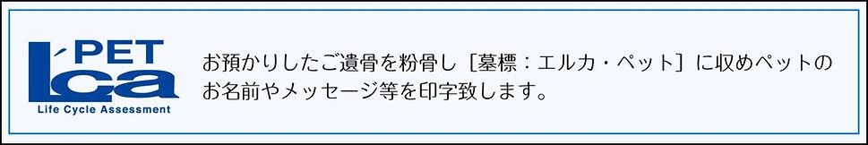 messageImage_1570785313639.jpg