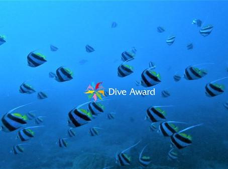 DiveAward千葉勝山ツアー 2020年12月17日