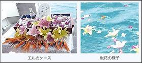 messageImage_1570786988407.jpg