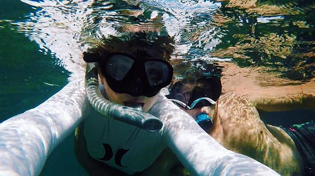 Sea creatures 🐙🐡🐠#underwater #miceont