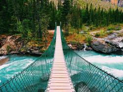 Rope bridge! Feeling it this morning aft