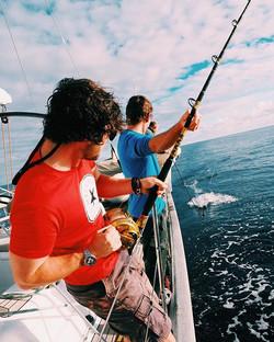 Hauling in a 15 kilo catch #fishing #sai