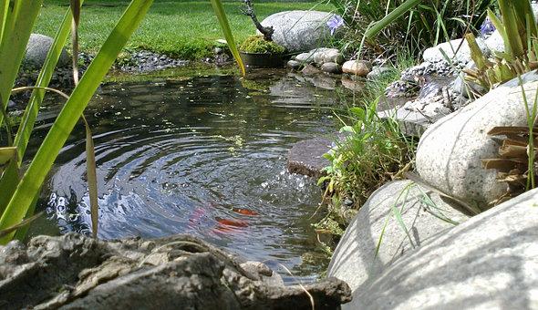 Estanques y cascadas for Proyecto cria de peces en estanques