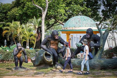 hawparvilla-stb-gorilla.jpg