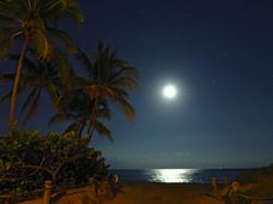 November Moonrise
