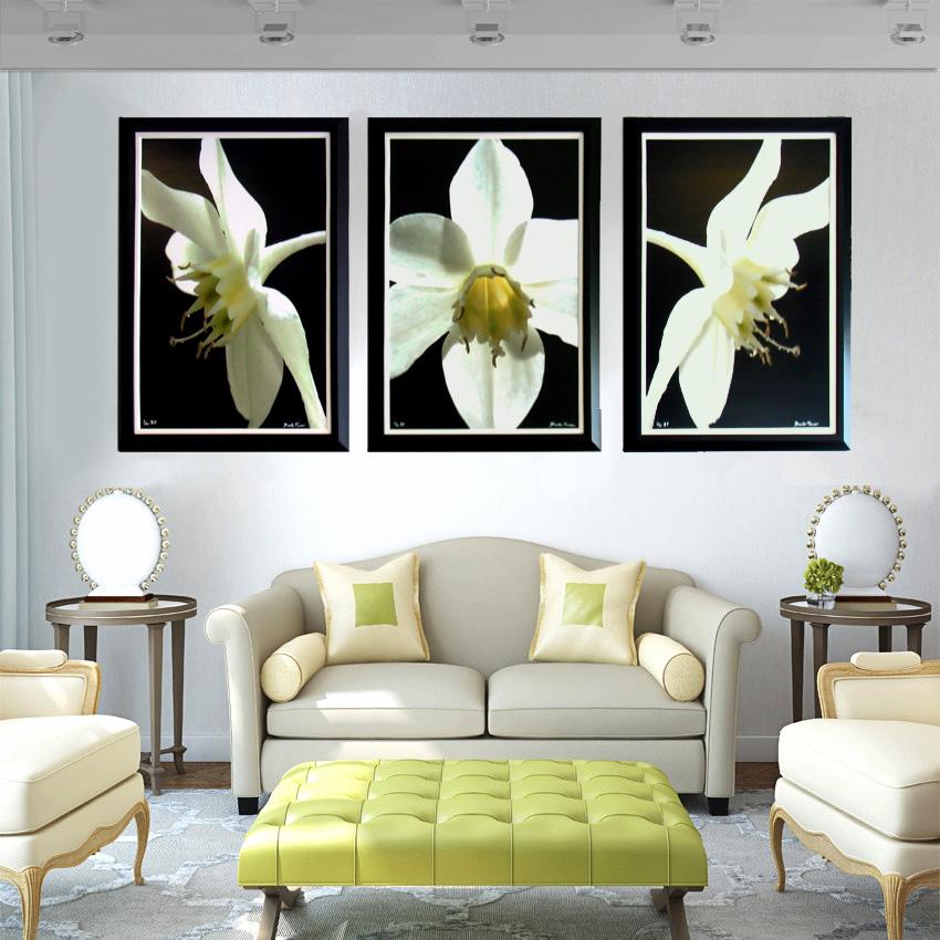 Orchid Triptik