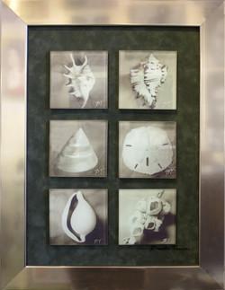 Seaside Treasures Glass Tiles