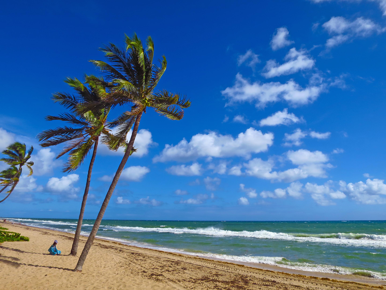 Auberge Palms