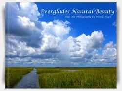 Everglades Natural Beauty