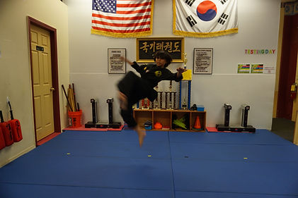 taekwondo martial arts kick