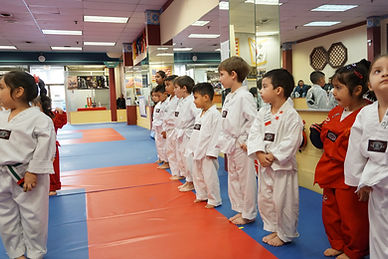 kids taekwondo martial arts