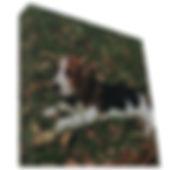 Canvas iclinado 2.jpg