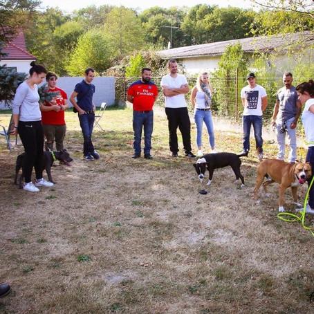 Journée Attestation d'Aptitude - SYM DOG Région Centre
