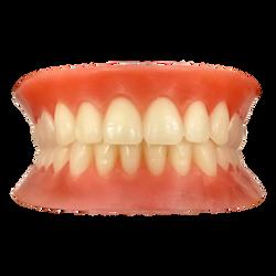 Pre-Waxed-Teeth.