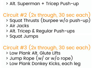 Full Body + No Equipment Workout of the Week