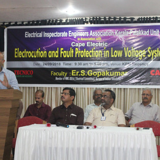 One day Seminar on Structural Earthing & SPD for CEIG Palakkad