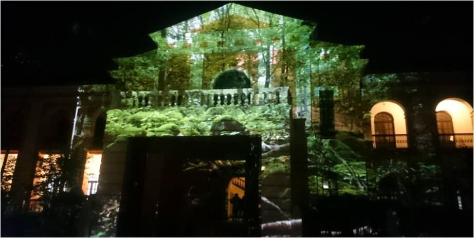 Sanaya Energy  stage lighting (5)