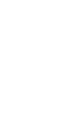 skull (back of tshirt).png